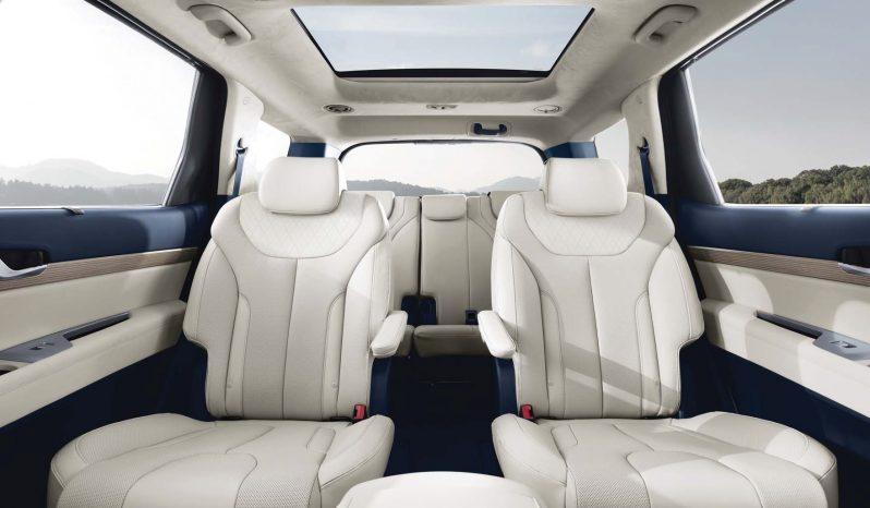 Hyundai Palisade full
